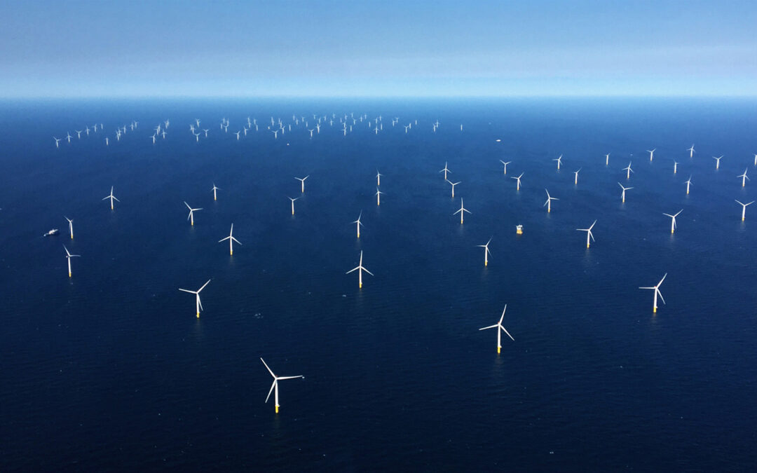 SEAWIND and IBERDROLA become partners for offshore wind projects in Poland